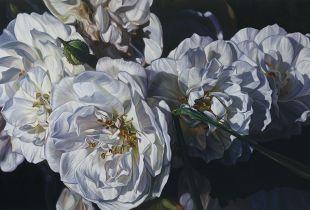 White, 140 x 230 cm, , Öl auf Leinwand