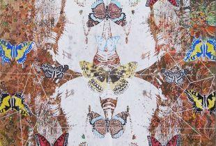 Schmetterlingskunde DDP, 140 x 100 cm, 2017, Mischtechnik auf Leinwand