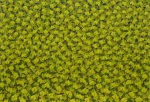 Weg, , 160 x 200 cm, 2008, Öl auf Leinwand